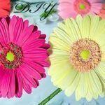 DIY Como hacer la flores muy realistas en goma eva
